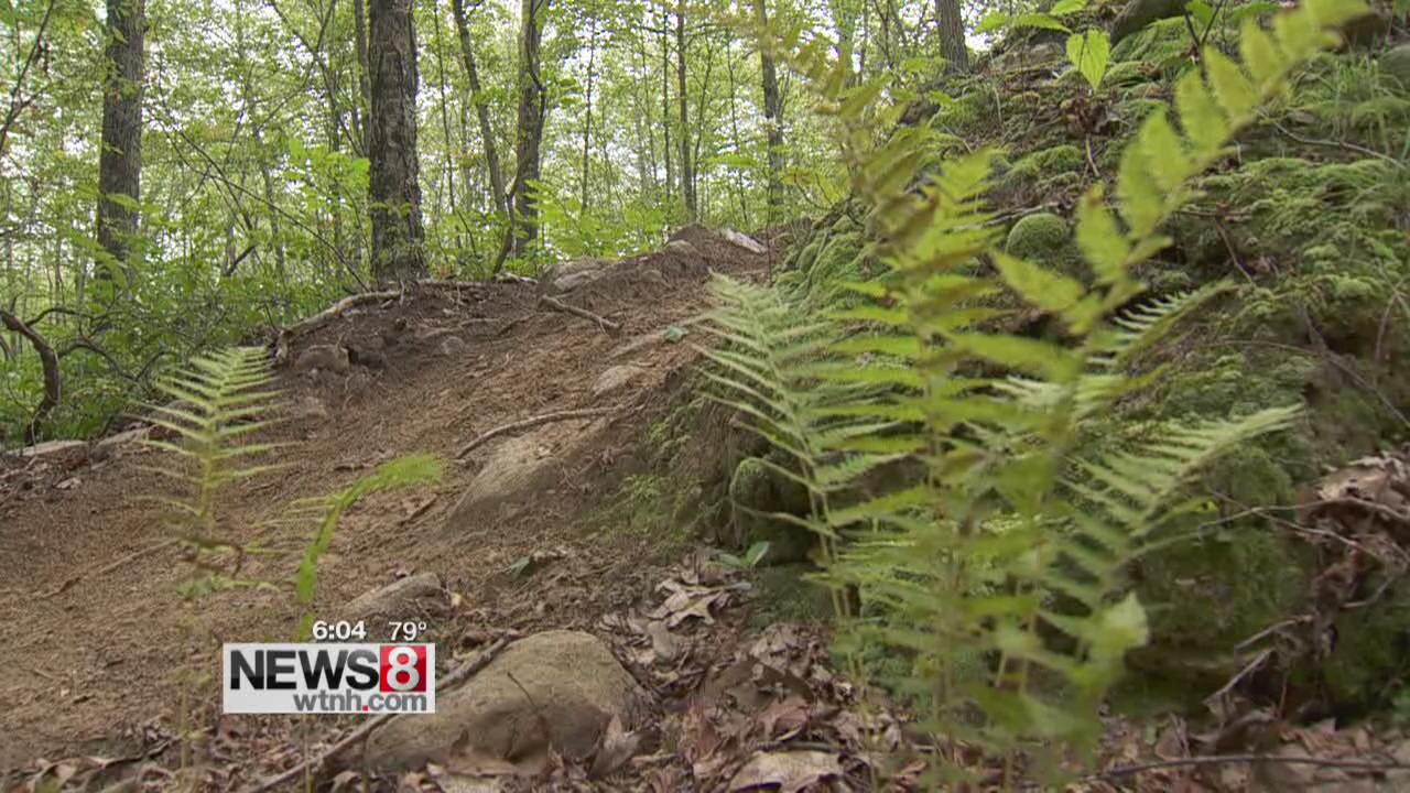 Illegal ATV riding destroying state parks