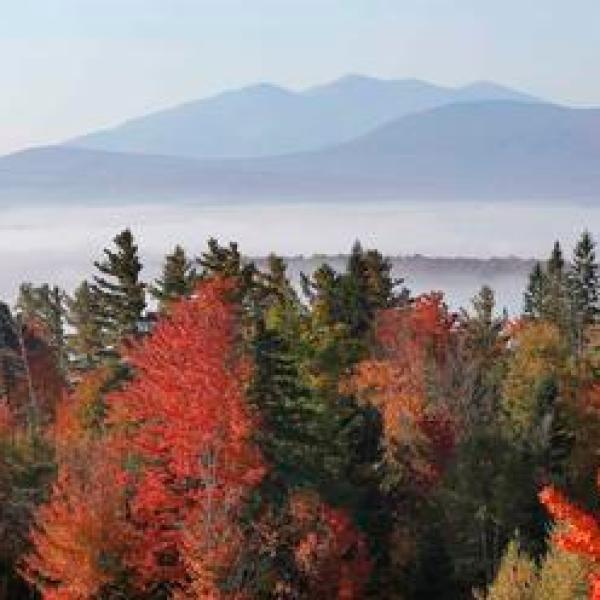 Travel Trip Fall Foliage Guide_329094