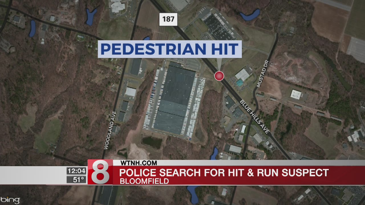 Police search for driver in Bloomfield hit and run