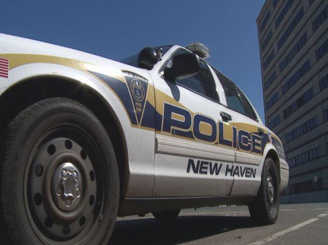 new-haven_police-cruiser-03_1523901570740.jpg