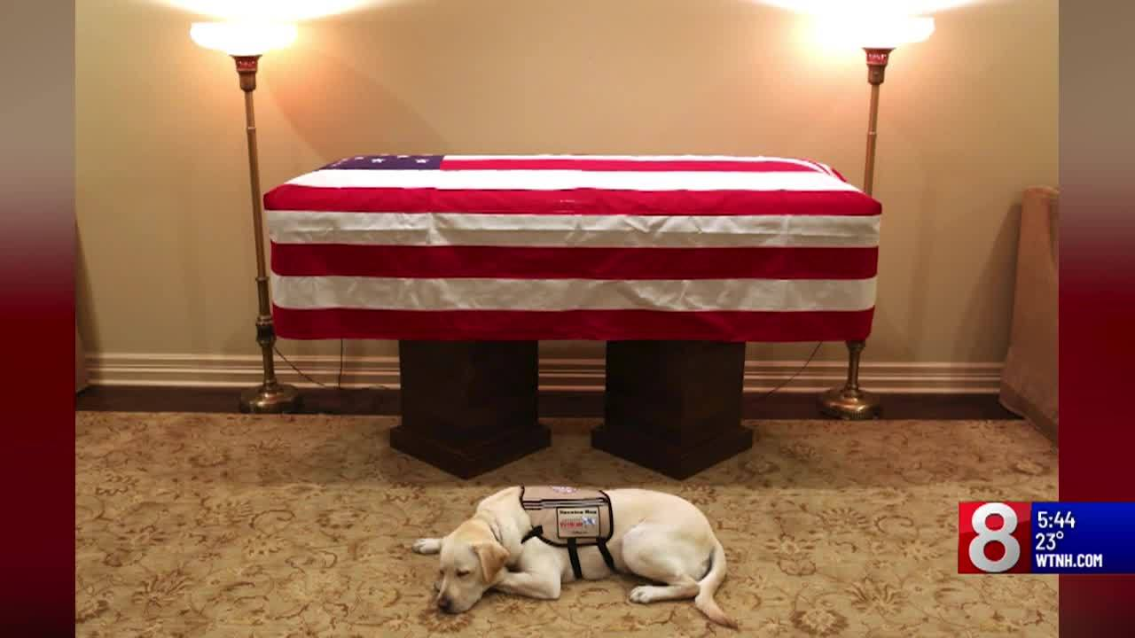 Sully_the_service_dog_has_a_new_mission_8_20181220105817