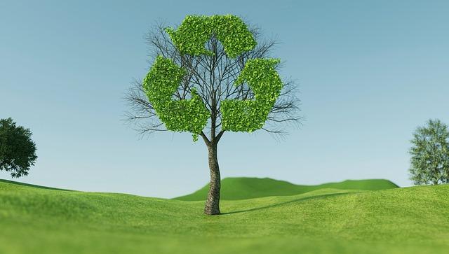 Brescia – Contributi per l'acquisto di servizi e consulenze sulla Sostenibilità