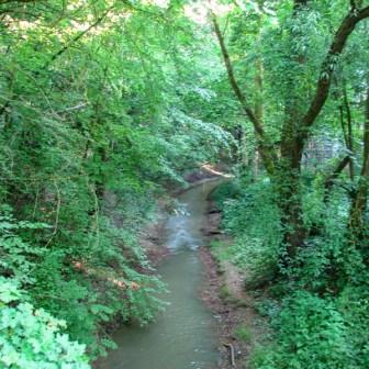 Die Pleichach verläuft durch die Lindleinsmühle oftmals unterirdisch und führt durch die Stadt bis in den Main.