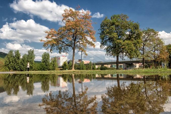 Große Pfützen ermöglichen großflächige Spiegelungen! Gesehen an den Talavera-Mainwiesen in Würzburg.
