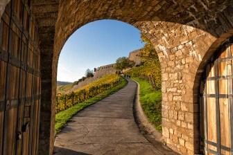 Spaziergang über den Weinwanderweg von der Festung Marienberg in die Stadt.