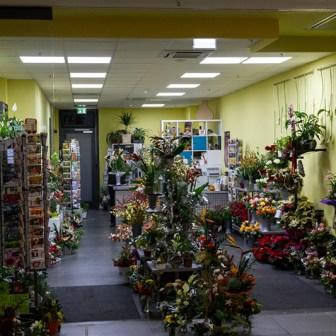 Auch das traditionsreiche Blumengeschäft hat nun eine neue Bleibe mit zeitgemäßer Ladeneinrichtung.