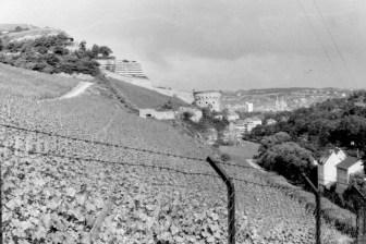Blick aus der Ferne auf den Maschikuliturm 1978.