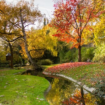 Für mich ist es immer wieder faszinierend, welches farbliche Schauspiel uns die Natur im Herbst so bietet.