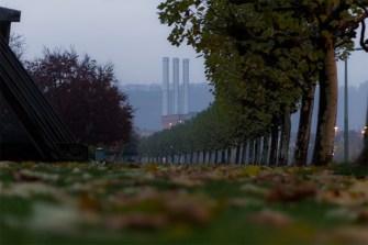 Herbstwetter an der Gutermann Promenade in Würzburg.