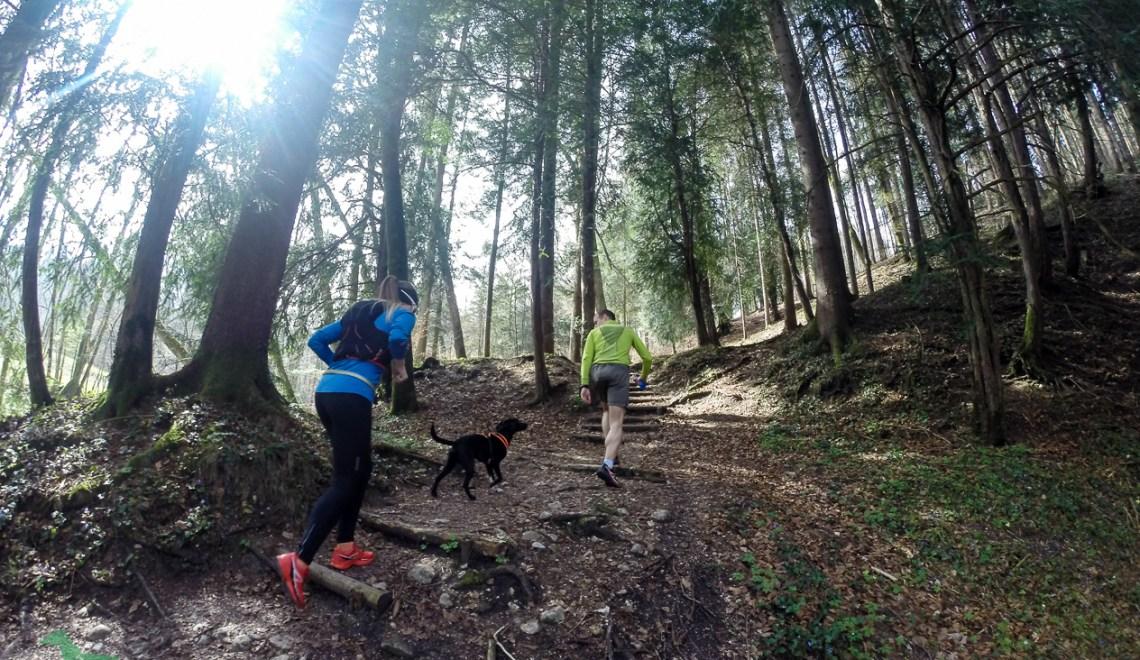 Trails im Revier von Steve in Marzoll – Saisonanfang