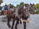 Goshen Historic Track Hayride