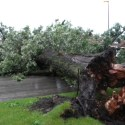 Brief Storm Does Severe Damage