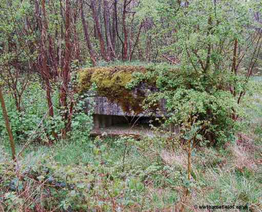 """One of the small """"forts"""", WW1 bunker along Hunter Avenue"""