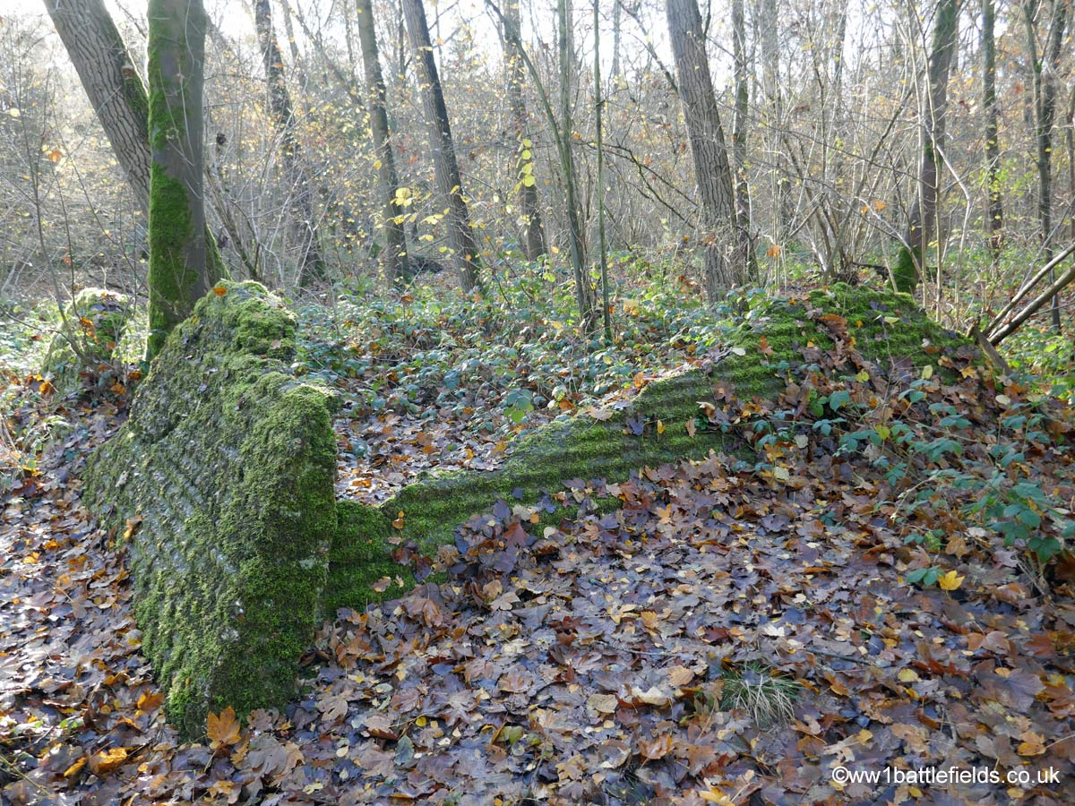 Remains of bunker in Ploegsteert Wood