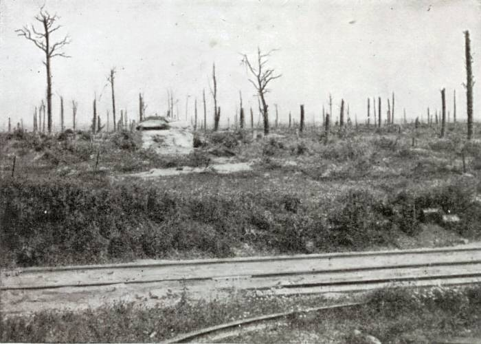 A machine-gun post in Trones Wood just after the War. Photo from the Michelin Guide to the Somme Battlefields