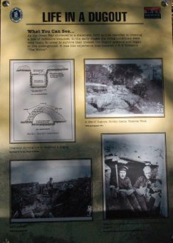 One of the information boards in the wood