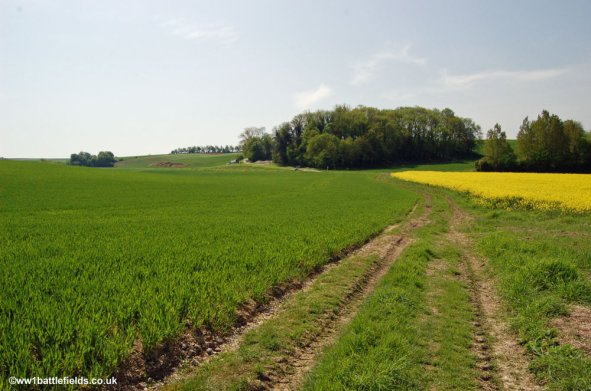 View from 'The Shrine' to the British front line positions July 1st 1916