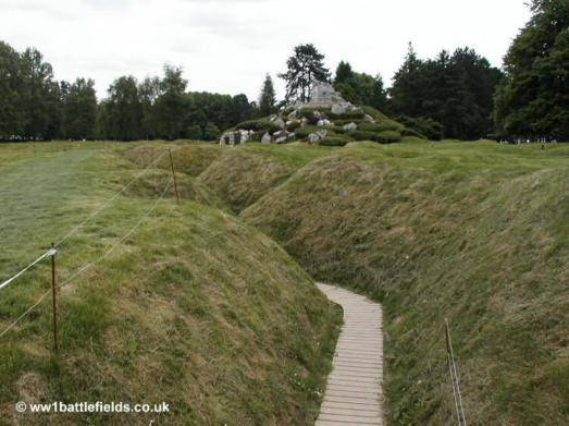 View of the caribou from the preserved trenches