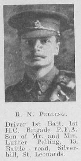 R N Pelling