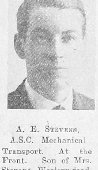 A E Stevens