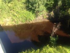 960x720 Red, in Alapahoochee River, by April Huntley, 1 September 2014