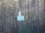 4288x3216 land for sale nearby, in Alapaha River at Statenville, January 2014 WWALS Outing, by Gretchen Quarterman, 18 January 2014