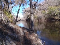 2048x1536 Upstream from above, in Alapaha River at Statenville, January 2014 WWALS Outing, by Gretchen Quarterman, 18 January 2014