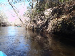 4288x3216 Corner, in Alapaha River at Statenville, January 2014 WWALS Outing, by Gretchen Quarterman, 18 January 2014