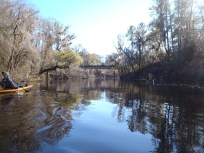 4288x3216 Bridge in sight, in Alapaha River at Statenville, January 2014 WWALS Outing, by Gretchen Quarterman, 18 January 2014