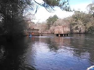 300x225 Movie: About 40 feet between piers (2.7M), in Alapaha deadfalls, by John S. Quarterman, for WWALS.net, 17 January 2015