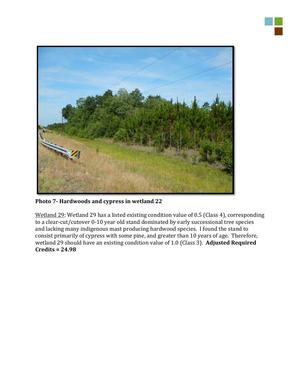 300x388 Hardwoods and cypress in wetland 22, in RE: SAS-2014-00862, Proposed U.S. Highway 84 Widening, by Gilbert B. Rogers, for WWALS.net, 28 May 2015