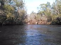 640x480 Movie: Eddies (2.4M), in Statenville to Sasser Landing on the Alapaha River, by John S. Quarterman, for WWALS.net, 15 February 2015