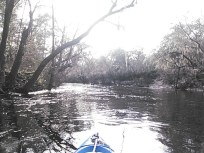640x480 Distant boat, in Statenville to Sasser Landing on the Alapaha River, by John S. Quarterman, for WWALS.net, 15 February 2015