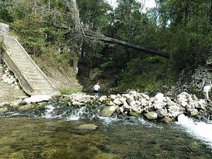 Hardee Spring dam 30.5446434, -83.2505264