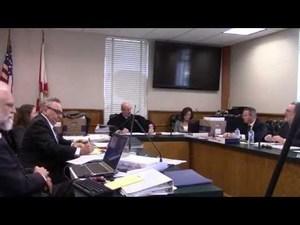 John S. Quarterman, William R. Wohlsifer, Leighanne Boone, Judge Bram D.E. Canter, court reporter, Timothy Riley (Sabal Trail), other respondent attorneys