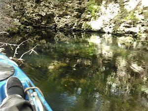 Hardee Spring cavern goes through to a karst window 30.5446434, -83.2505264