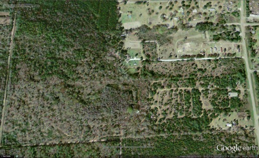 Figure 4: 2004-12-30 Still forested wetlands