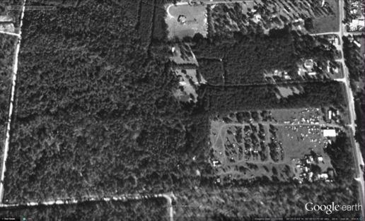 Figure 2: 1994-02-13 Hardwoods in wetlands