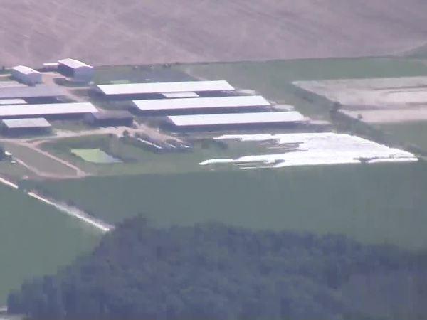 Suwannee Farms (east)