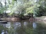 Phil at a creek, 31.0355380, -83.4897100