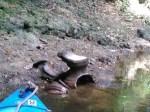 Broken outdoor oven in river, 31.0236664, -83.4716339