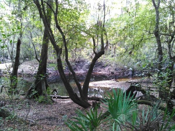 KIMG7417 Downstream
