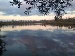 St Marys River upstream