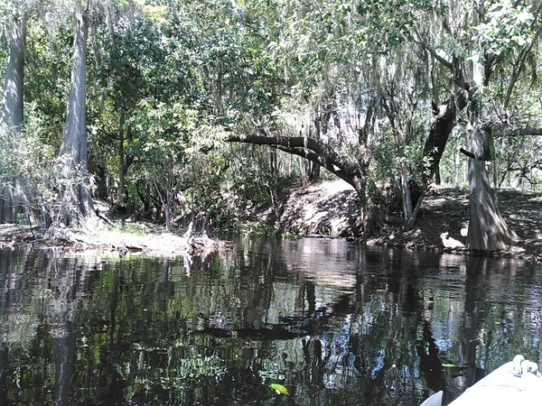 Rocky Creek,