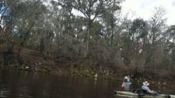 Suwannee County (left) bank, Suwannee River, Sabal Trail crossing, 30.4068650, -83.1559890