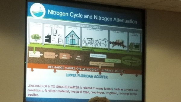 Nitrogen Cycle and Nitrogen Attenuation
