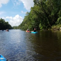Down the Withlacoochee River