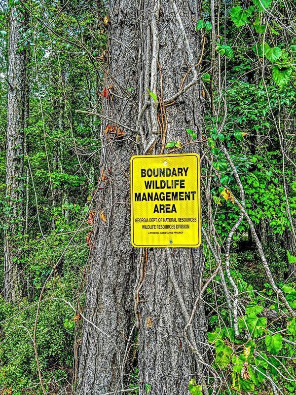 Boundary Wildlife Management Area