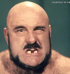The Ultimate Wrestler