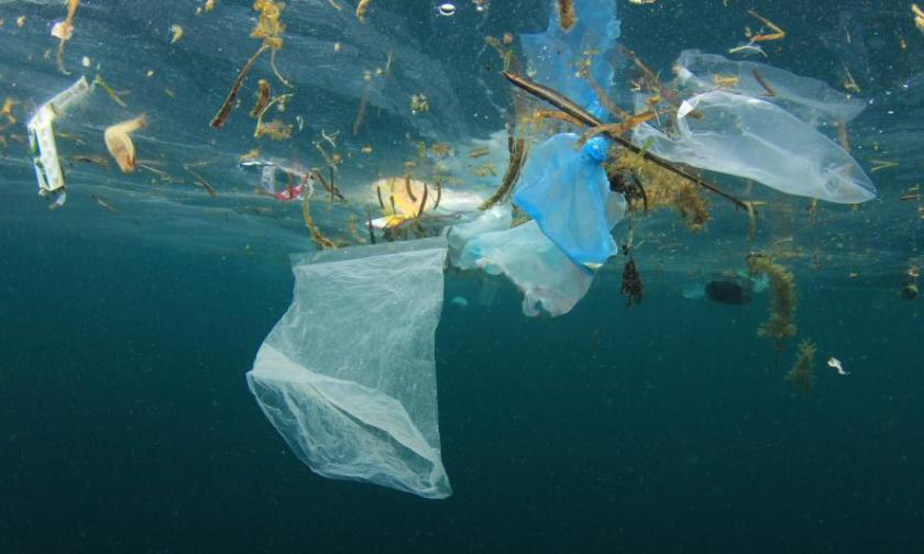 Fight against plastic pollution | WWF
